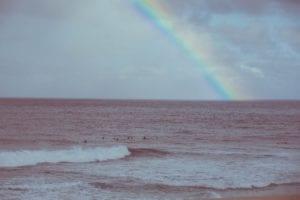 Healthy_Hawaii_Rainbow