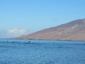 Healthy_Hawaii_Surf
